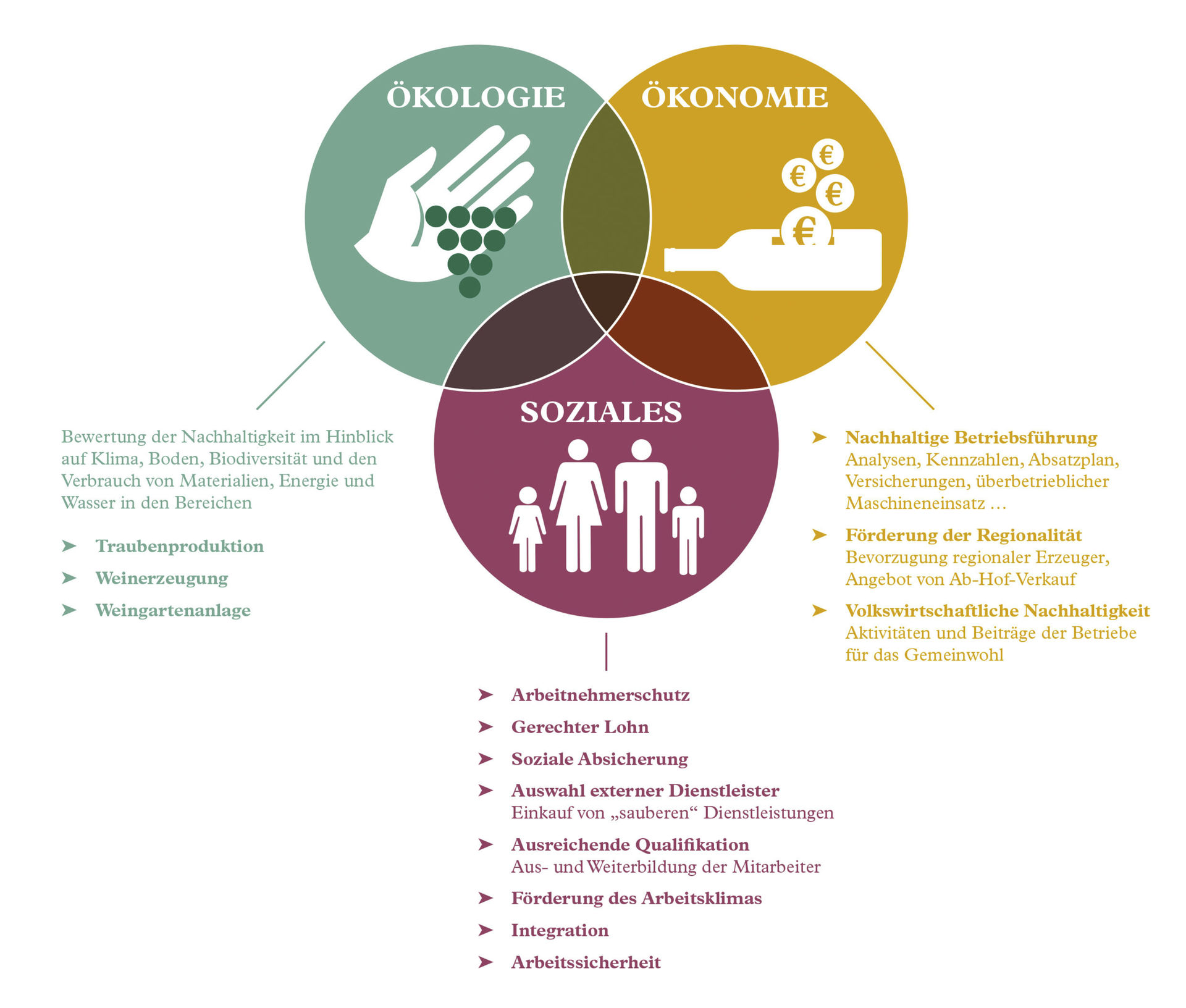 A picture shows the Key factors of sustainability.