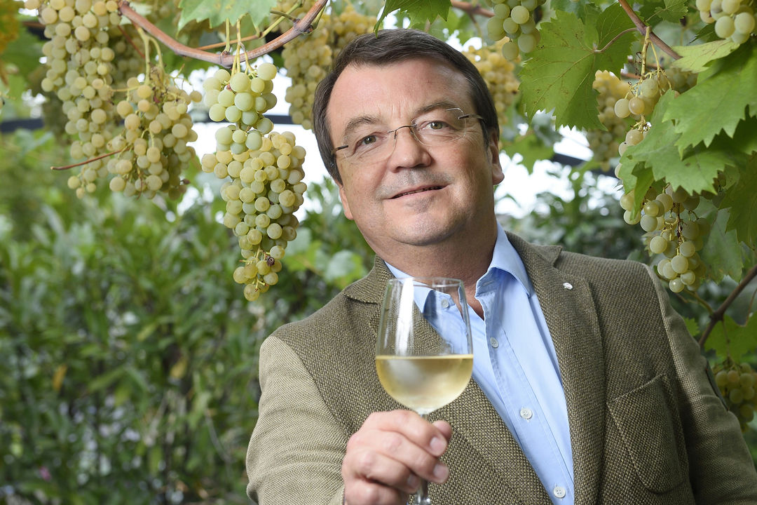 A picture shows Wilhelm Klinger in a vineyard with a glas of white wine, © Johannes Zinner (mail@fotovonzinner.com).