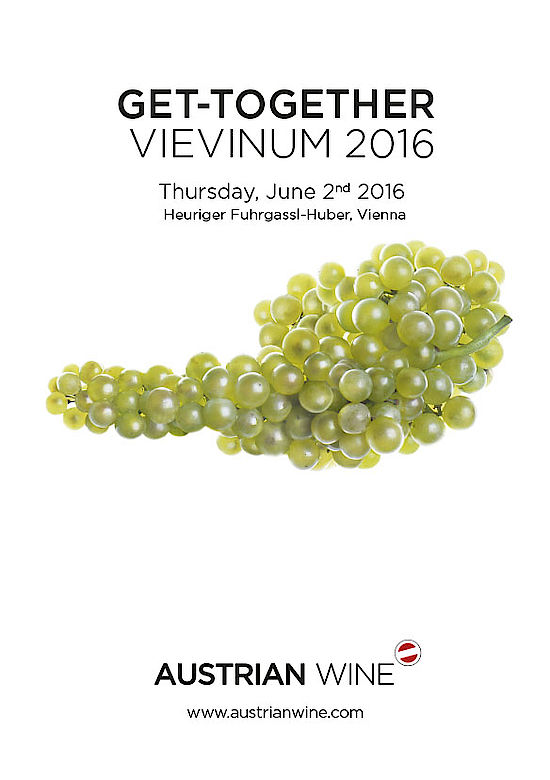 Get Together - VIEVINUM 2016